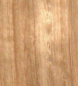 European interior design wood Ash