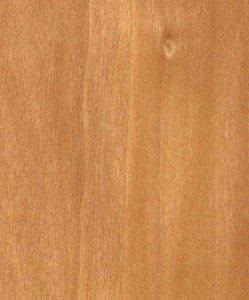 European interior design wood Birch