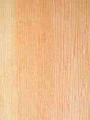 Different Types of Timber and Wood from Canada and USA for