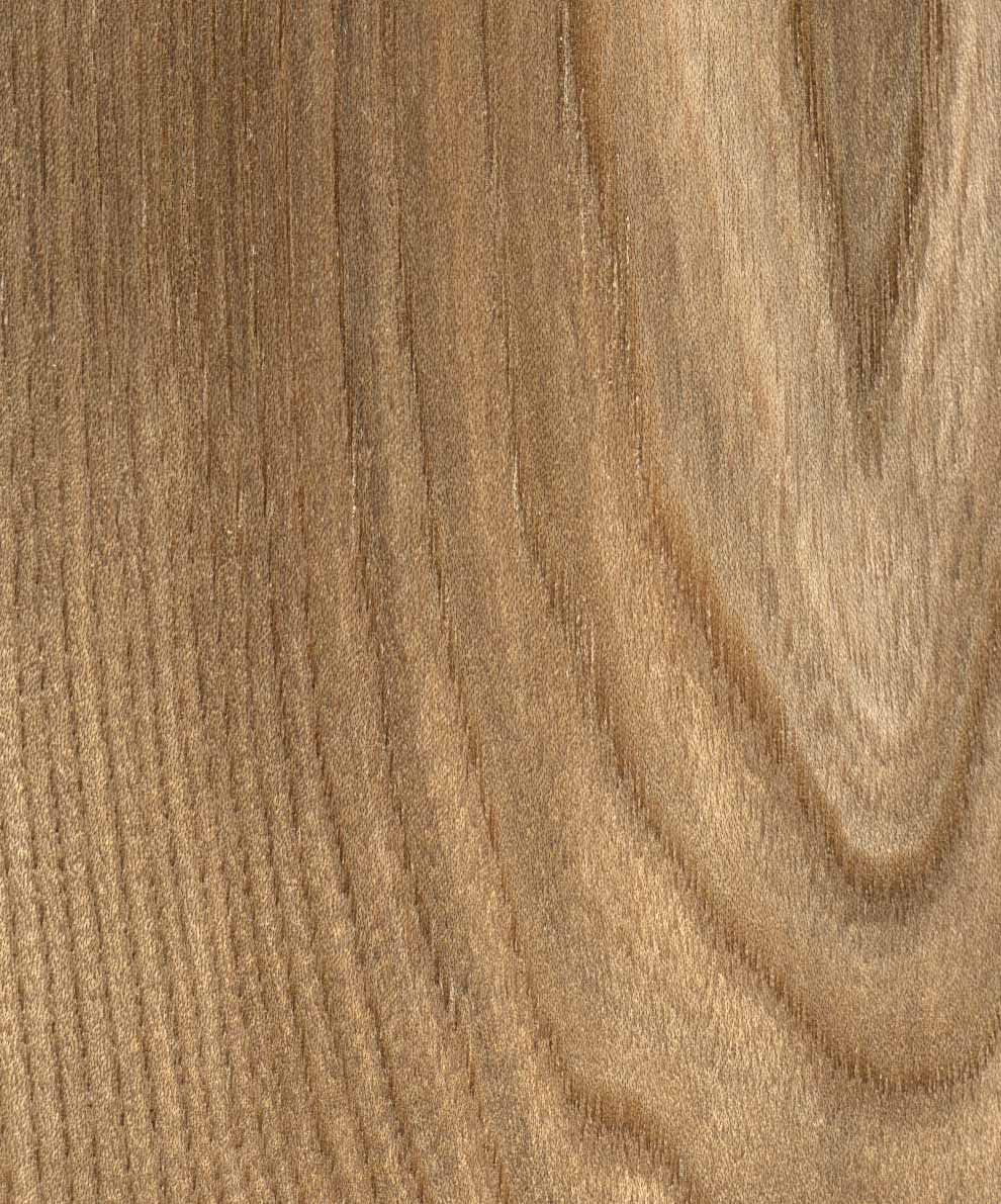 European Interior Design Wood. Types Of Wood From Europe