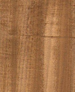 Mahogany--Afromosia - African Wood for interior design
