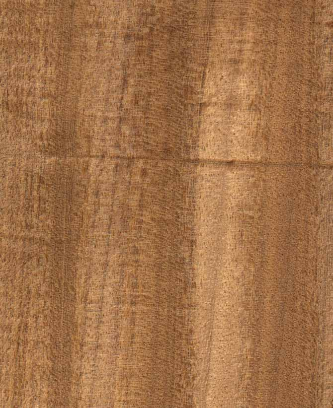 Illustrated Guide To Different Types Of Africa Wood For
