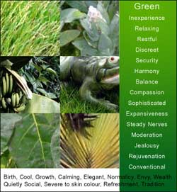 Green Color Meanings and Associations