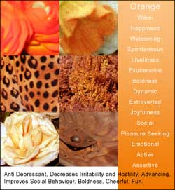 Orange Color Meanings and Associations