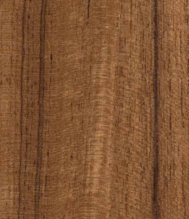 Asian Wood For Interior Design From India Burma Malaysia